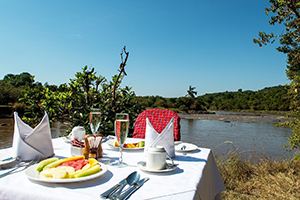 Breakfast by the hippo pool